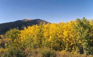 Mt Emmons in the fall