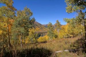 7-nicholson-lake-view