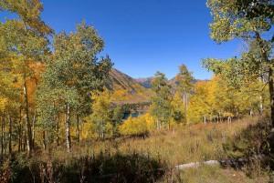 7-nicholson-lake-view-brighter